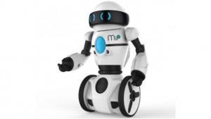 Házfelügyelő robot