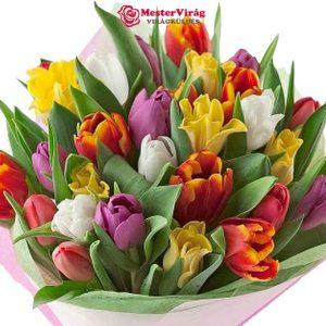 Tulipán virágcsokor