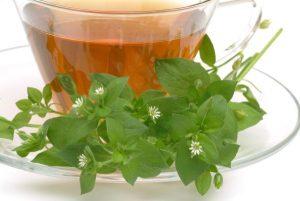 Tyúkhúr tea