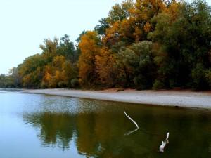 Duna-delta ősszel