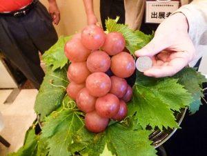Ruby Roman szőlő