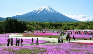 Fuji-Hakone-Izu Nemzeti Park