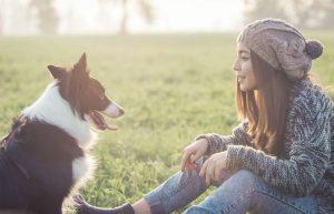 Állatok jótékony hatása